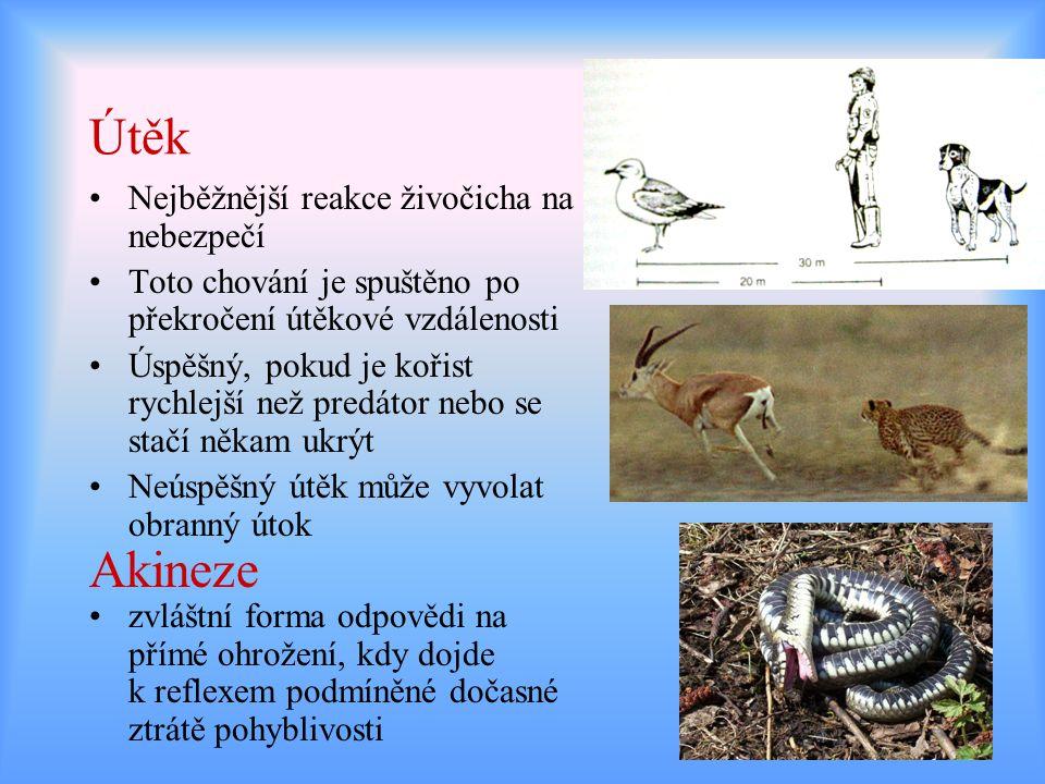 Útěk Akineze Nejběžnější reakce živočicha na nebezpečí