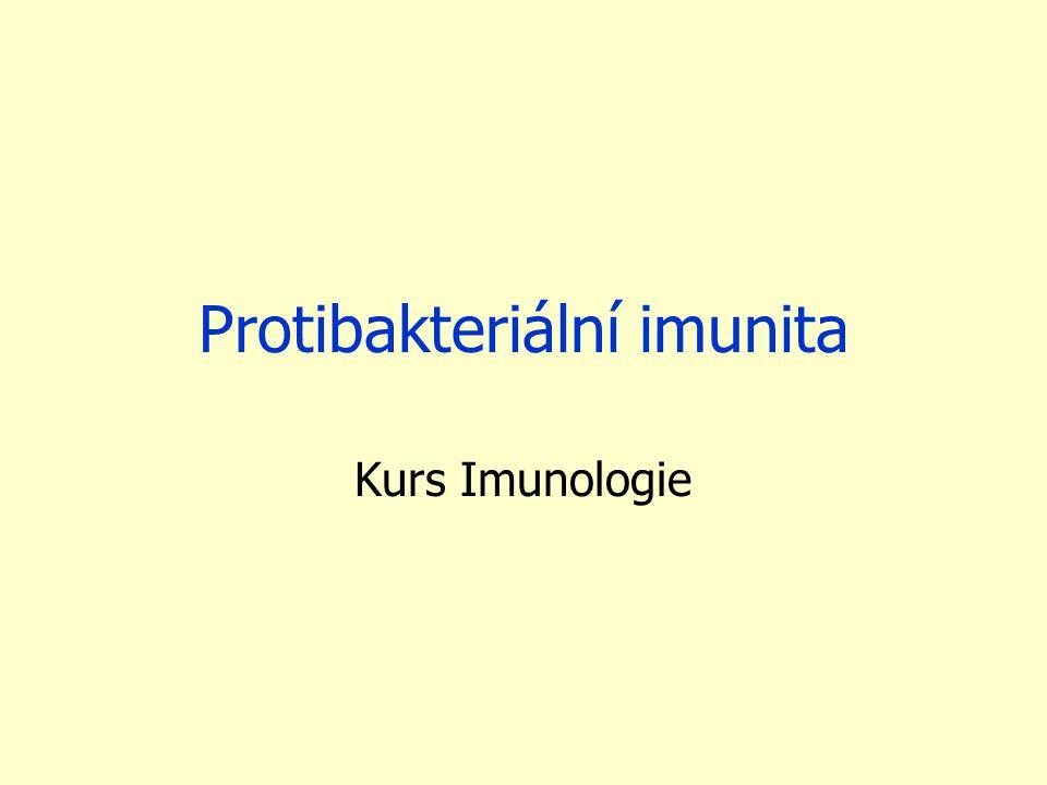 Protibakteriální imunita