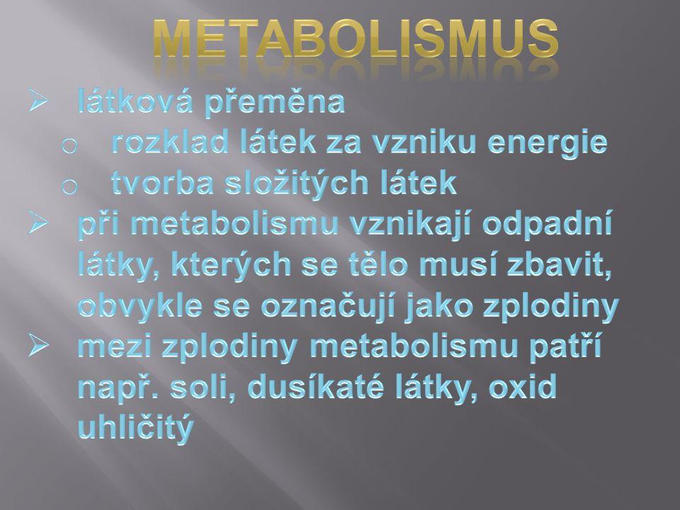 metabolismus látková přeměna rozklad látek za vzniku energie