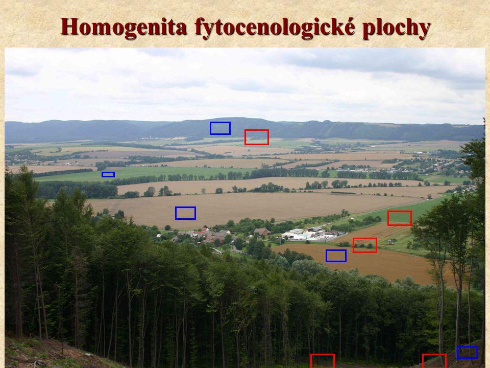 Homogenita fytocenologické plochy