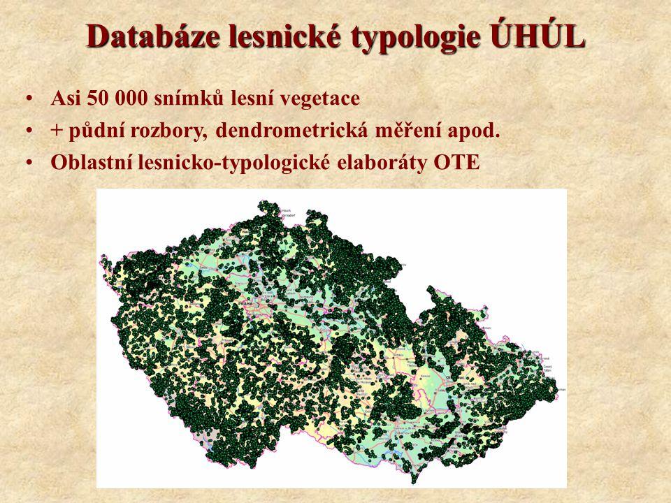 Databáze lesnické typologie ÚHÚL