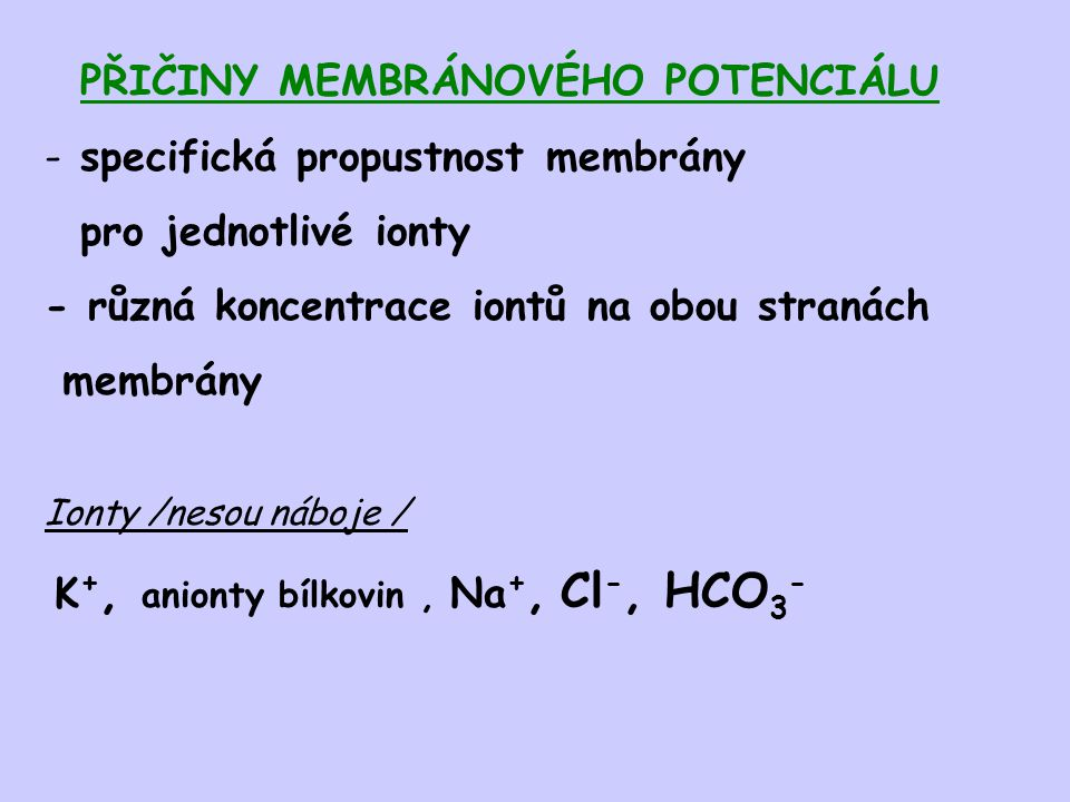 PŘIČINY MEMBRÁNOVÉHO POTENCIÁLU specifická propustnost membrány
