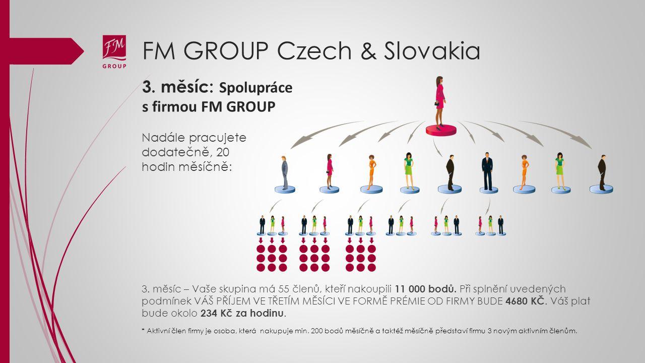 3. měsíc: Spolupráce s firmou FM GROUP