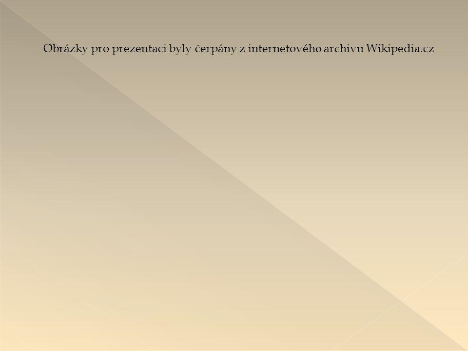 Obrázky pro prezentaci byly čerpány z internetového archivu Wikipedia