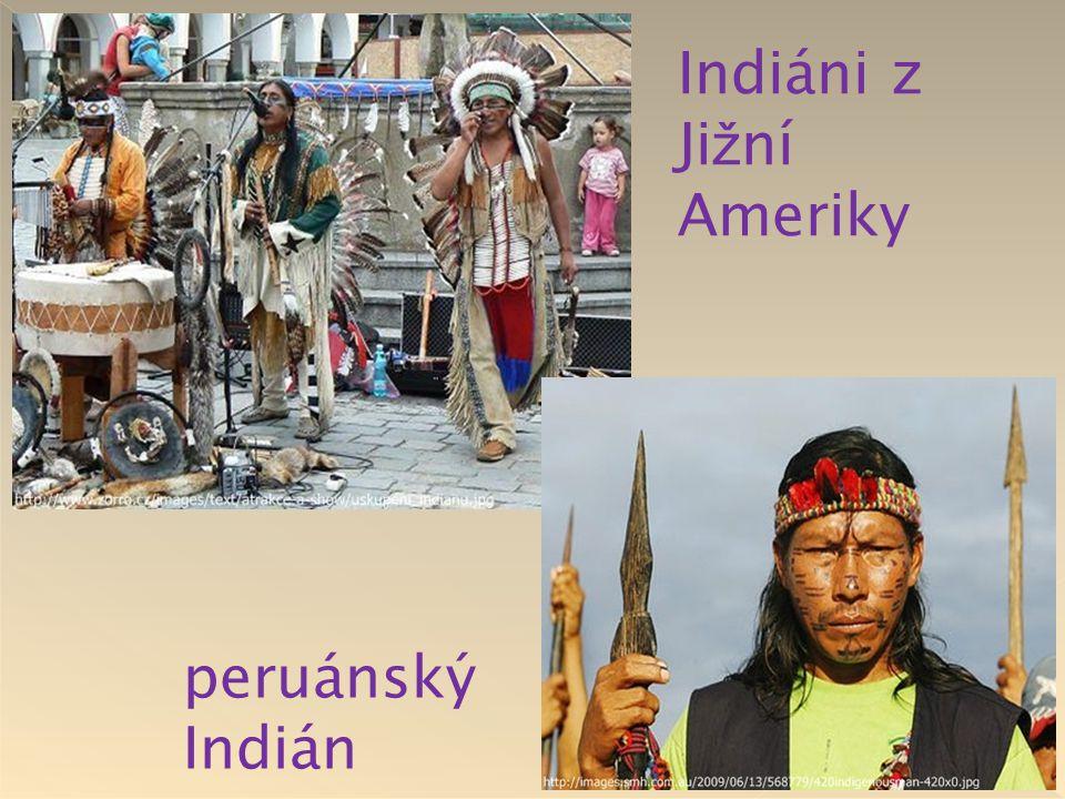 Indiáni z Jižní Ameriky peruánský Indián