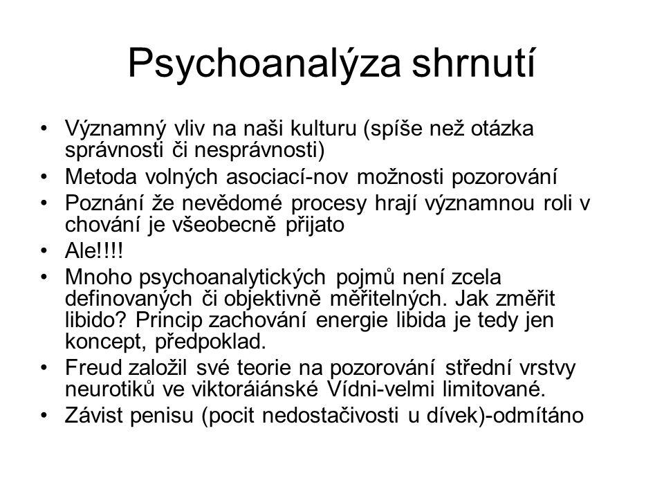Psychoanalýza shrnutí