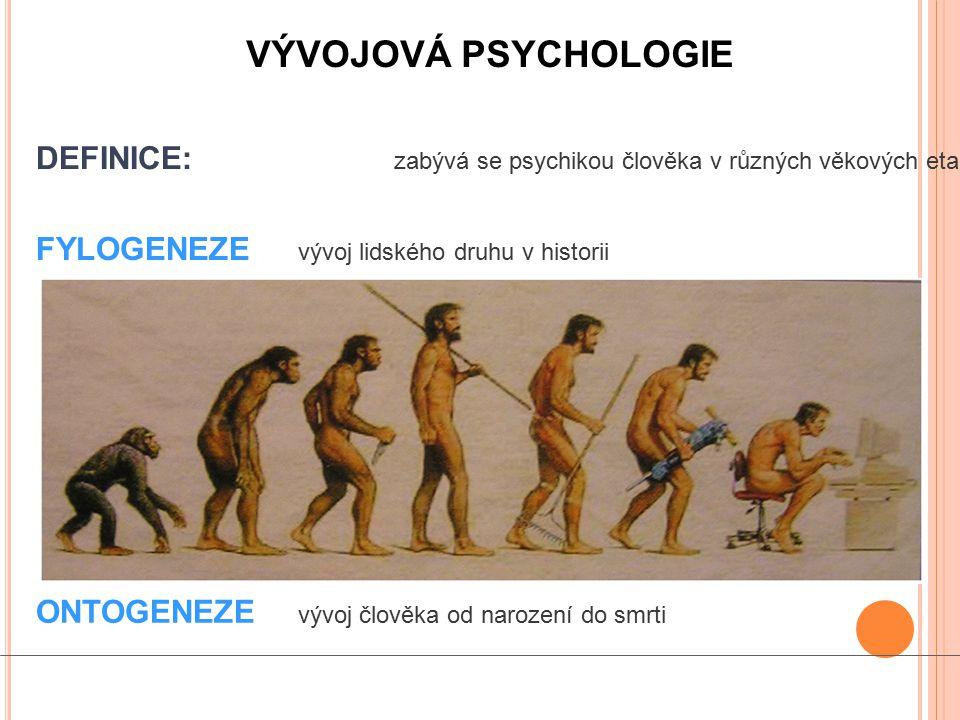 VÝVOJOVÁ PSYCHOLOGIE DEFINICE: zabývá se psychikou člověka v různých věkových etapách. FYLOGENEZE vývoj lidského druhu v historii.