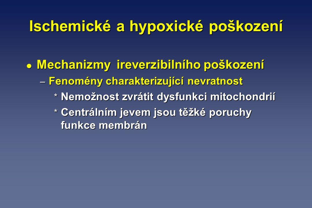 Ischemické a hypoxické poškození