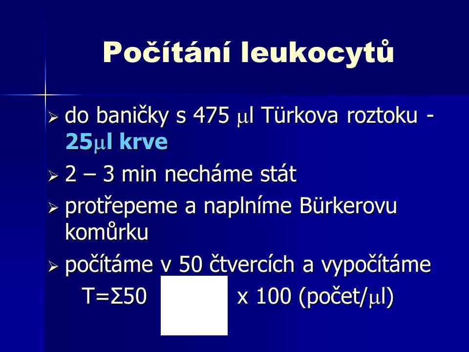Počítání leukocytů do baničky s 475 l Türkova roztoku - 25l krve