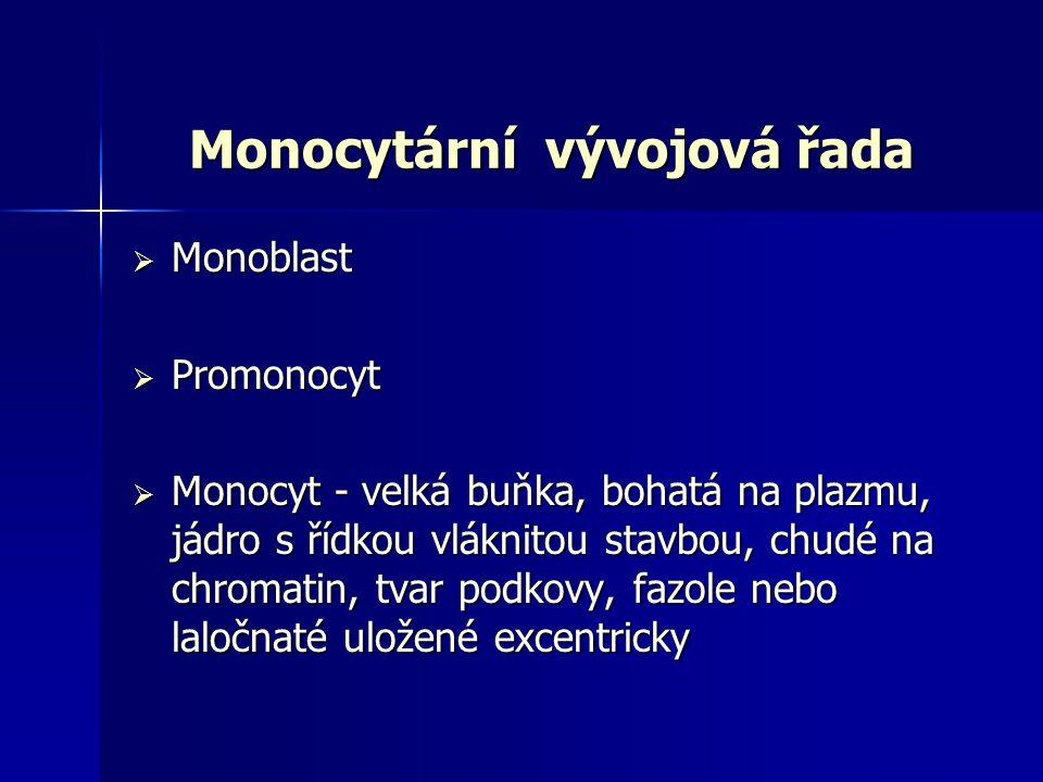 Monocytární vývojová řada