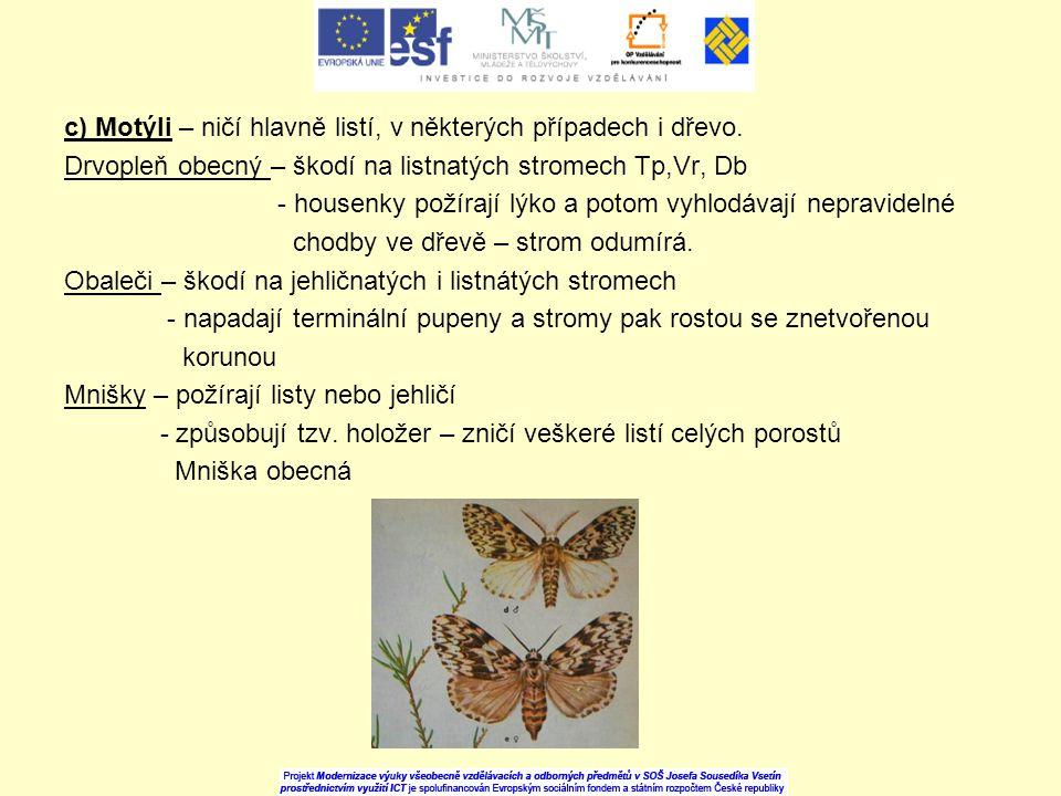 c) Motýli – ničí hlavně listí, v některých případech i dřevo.