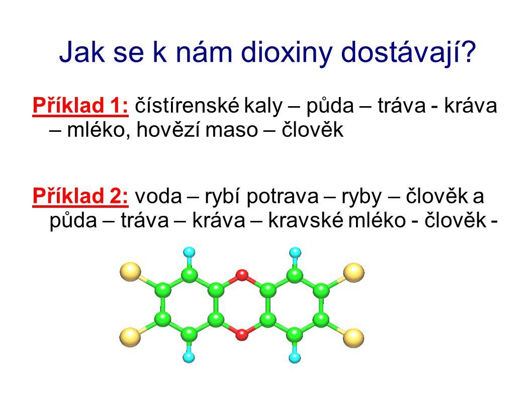 Jak se k nám dioxiny dostávají