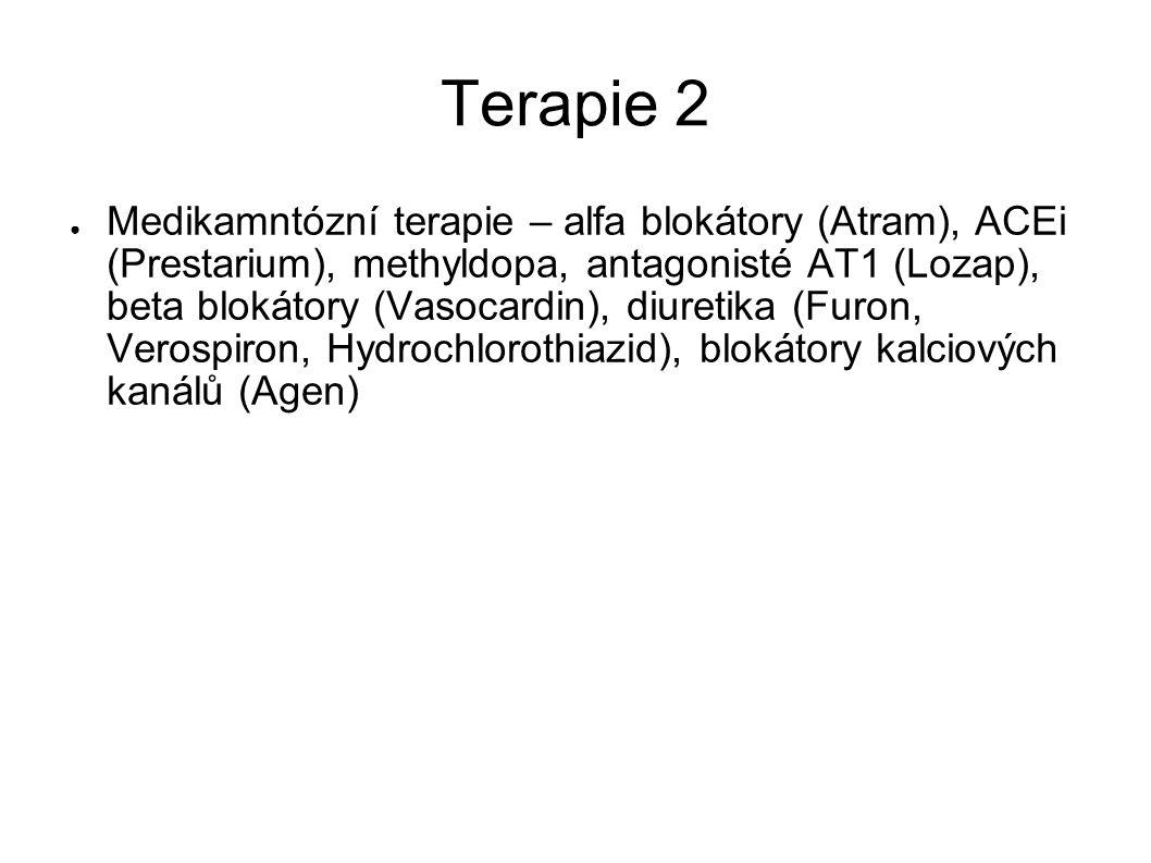 Terapie 2