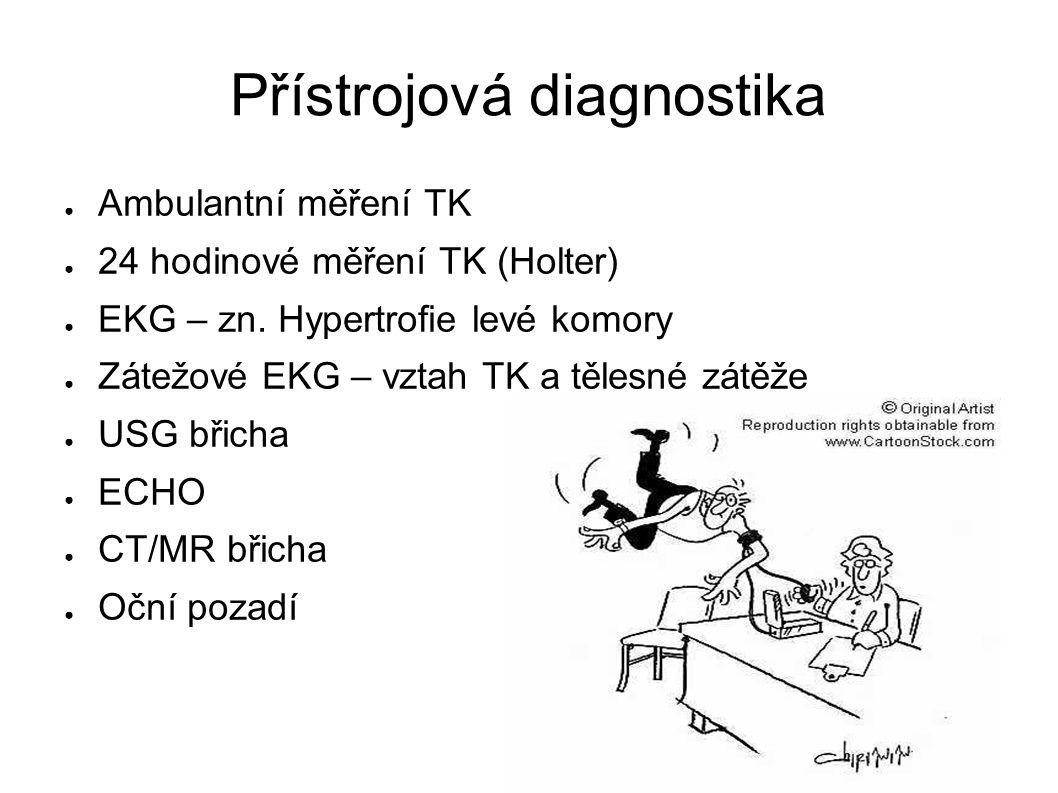 Přístrojová diagnostika