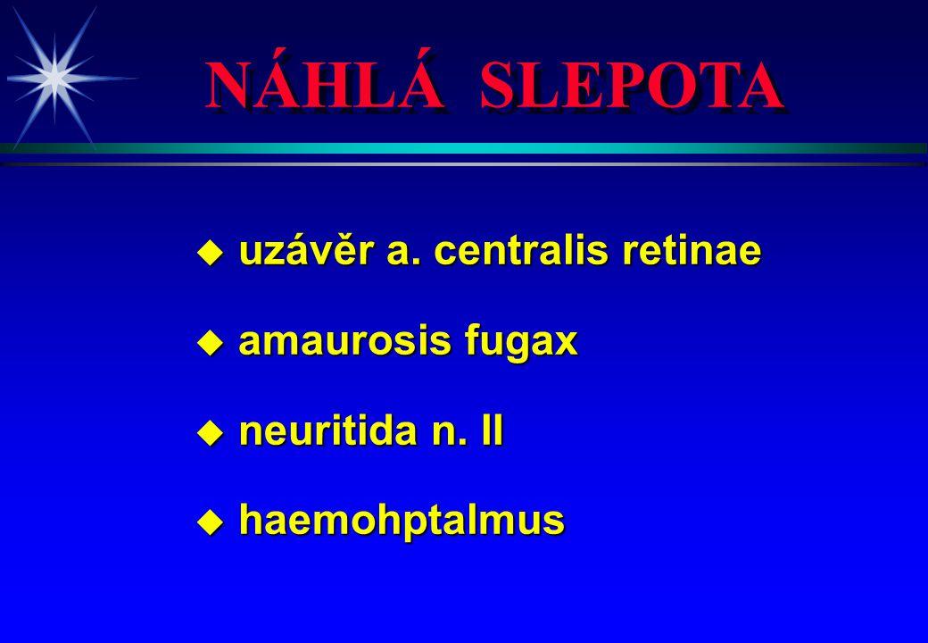 NÁHLÁ SLEPOTA uzávěr a. centralis retinae amaurosis fugax