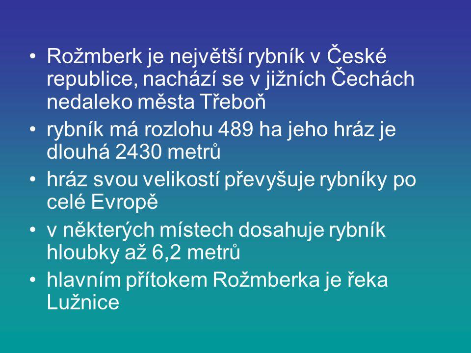 Rožmberk je největší rybník v České republice, nachází se v jižních Čechách nedaleko města Třeboň