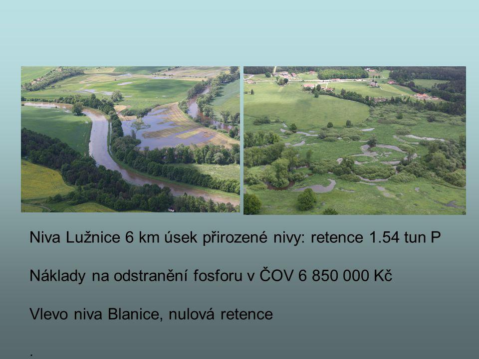 Niva Lužnice 6 km úsek přirozené nivy: retence 1.54 tun P