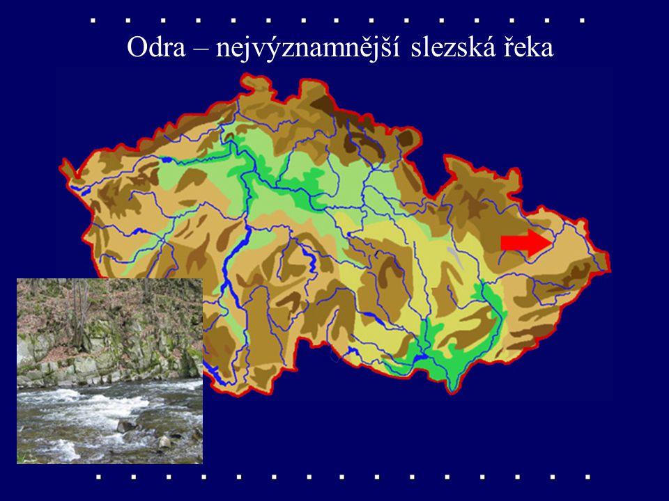 Odra – nejvýznamnější slezská řeka