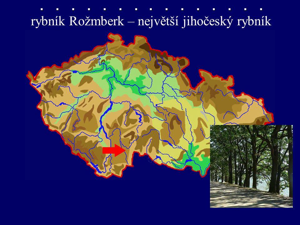 rybník Rožmberk – největší jihočeský rybník