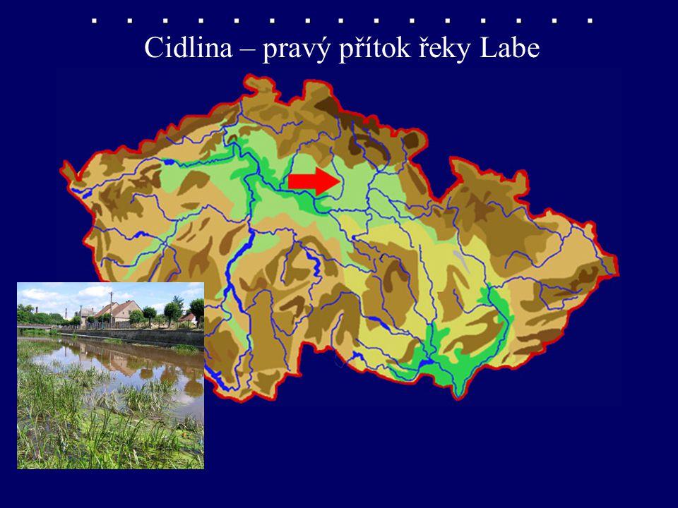 Cidlina – pravý přítok řeky Labe
