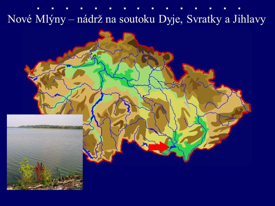 Nové Mlýny – nádrž na soutoku Dyje, Svratky a Jihlavy