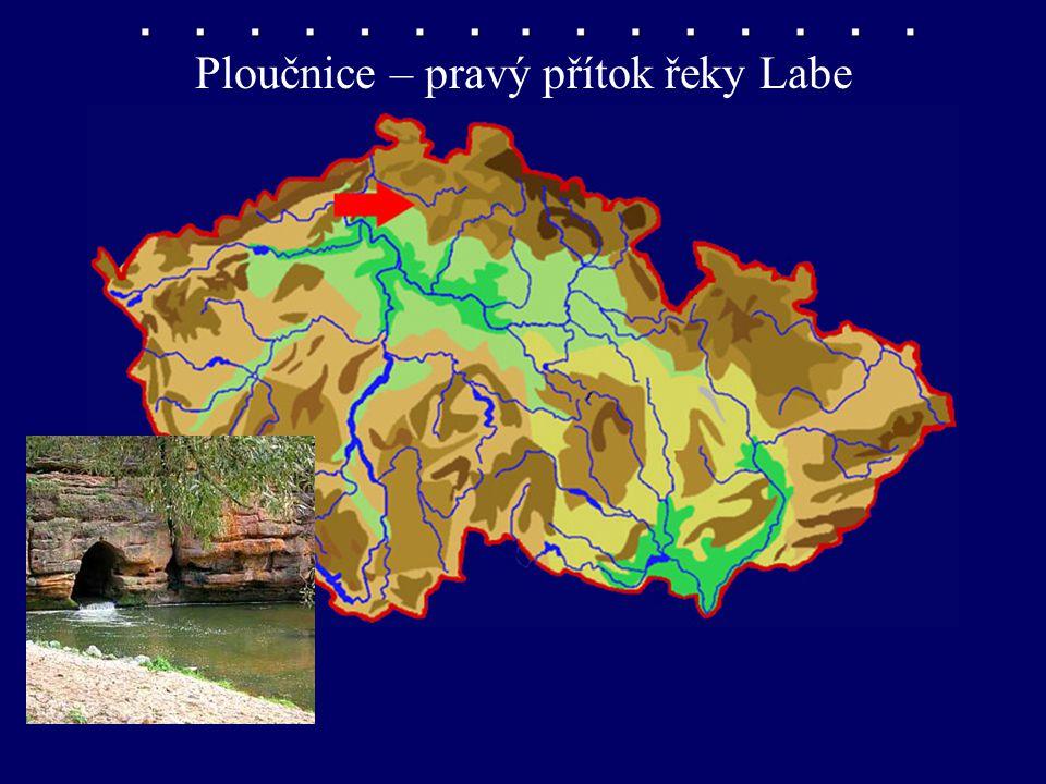 Ploučnice – pravý přítok řeky Labe