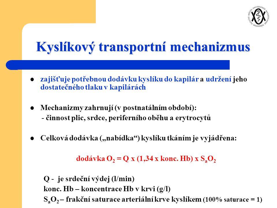 Kyslíkový transportní mechanizmus