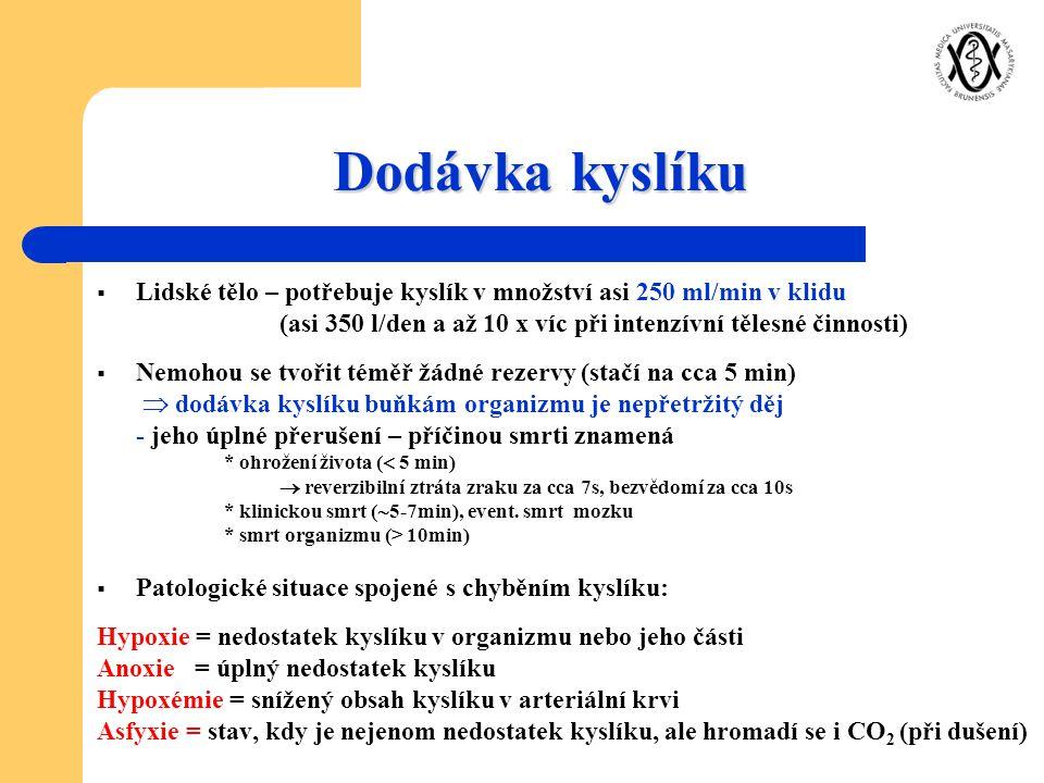 Dodávka kyslíku Lidské tělo – potřebuje kyslík v množství asi 250 ml/min v klidu. (asi 350 l/den a až 10 x víc při intenzívní tělesné činnosti)