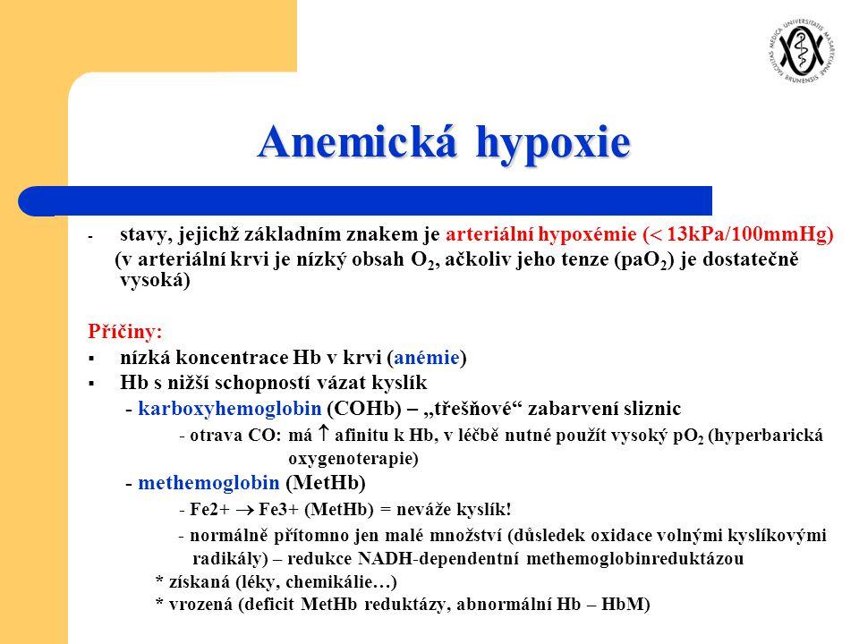 Anemická hypoxie stavy, jejichž základním znakem je arteriální hypoxémie ( 13kPa/100mmHg)