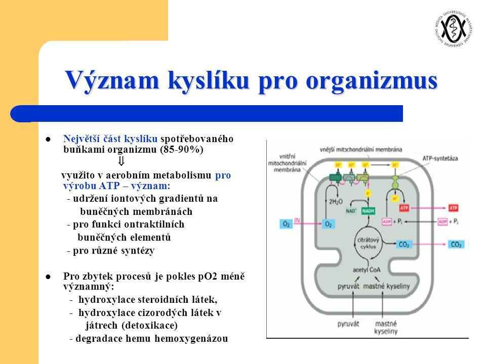 Význam kyslíku pro organizmus