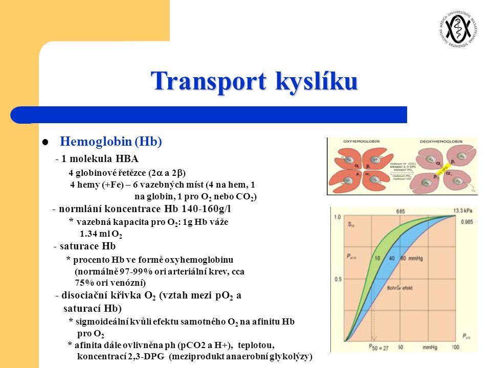Transport kyslíku Hemoglobin (Hb) - 1 molekula HBA