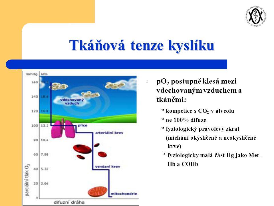 Tkáňová tenze kyslíku pO2 postupně klesá mezi vdechovaným vzduchem a tkáněmi: * kompetice s CO2 v alveolu.