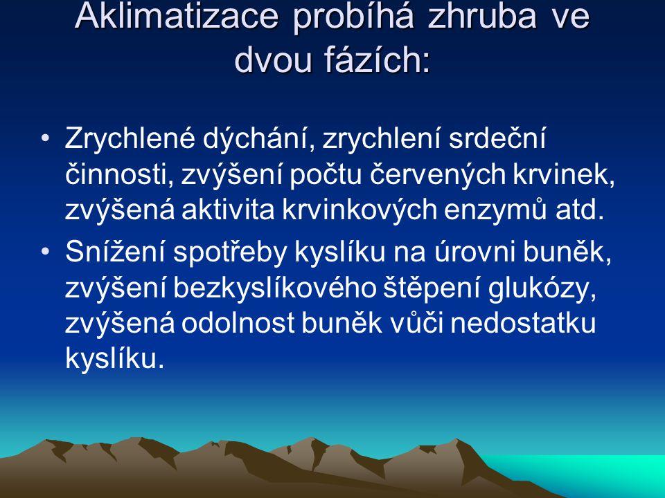 Aklimatizace probíhá zhruba ve dvou fázích: