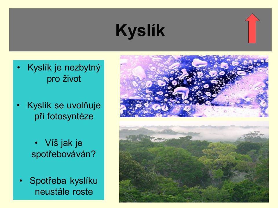 Kyslík Kyslík je nezbytný pro život Kyslík se uvolňuje při fotosyntéze