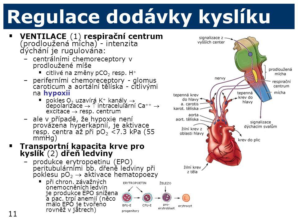 Regulace dodávky kyslíku