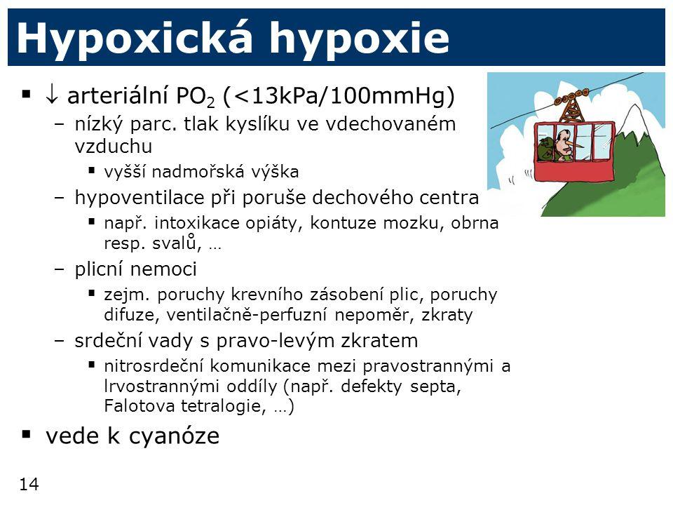 Hypoxická hypoxie  arteriální PO2 (<13kPa/100mmHg) vede k cyanóze
