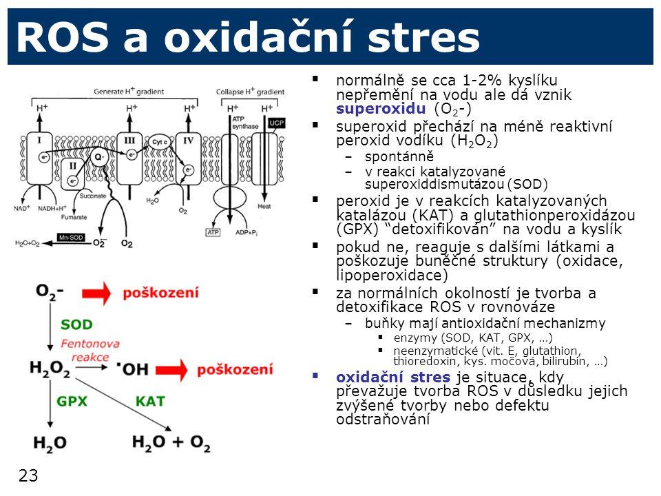 ROS a oxidační stres normálně se cca 1-2% kyslíku nepřemění na vodu ale dá vznik superoxidu (O2-)