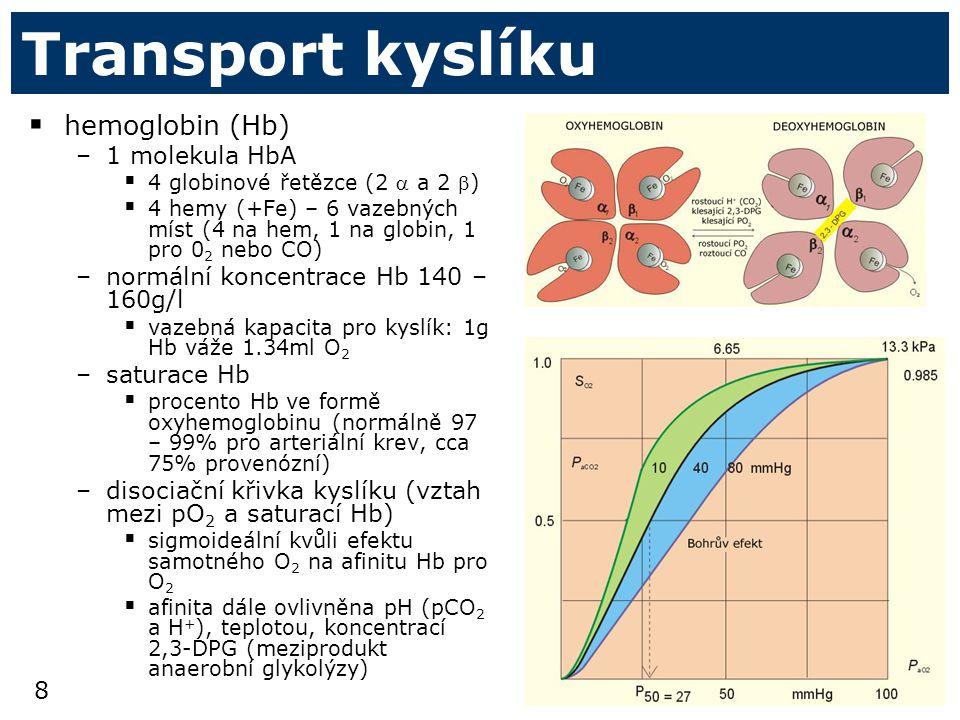 Transport kyslíku hemoglobin (Hb) 1 molekula HbA