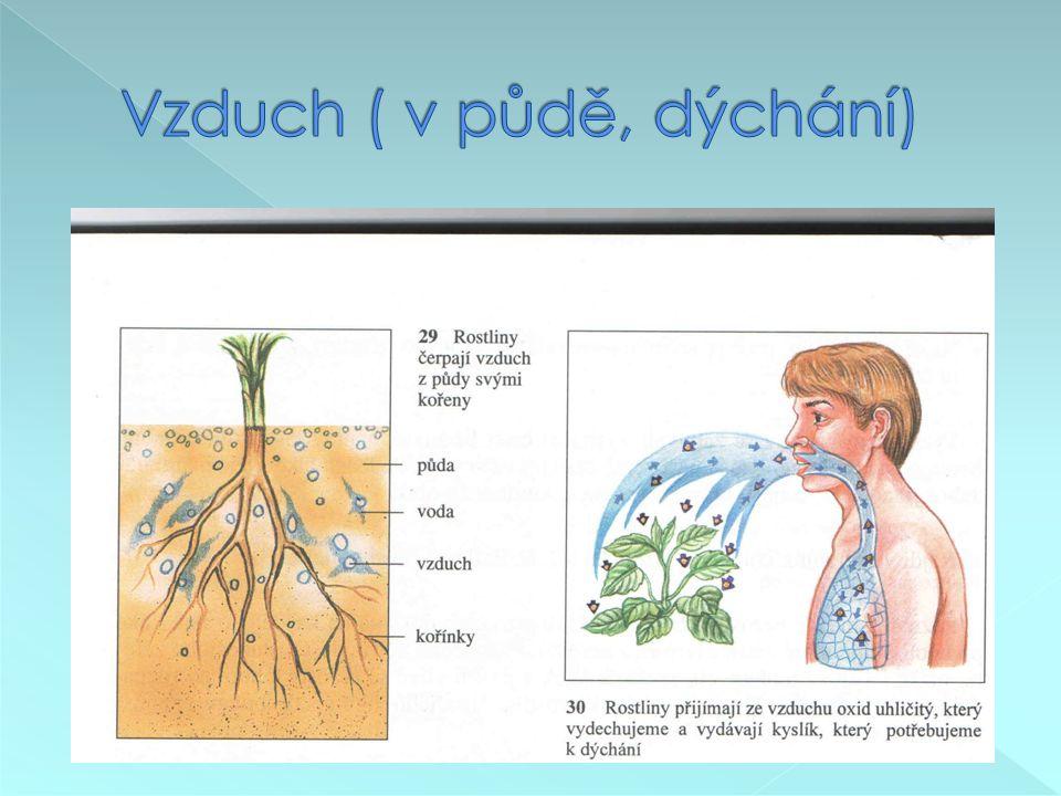 Vzduch ( v půdě, dýchání)