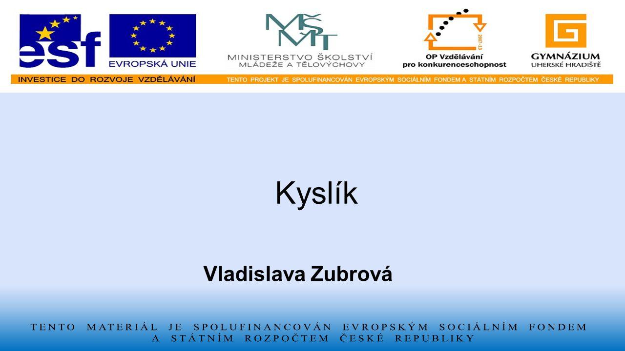 Kyslík Vladislava Zubrová