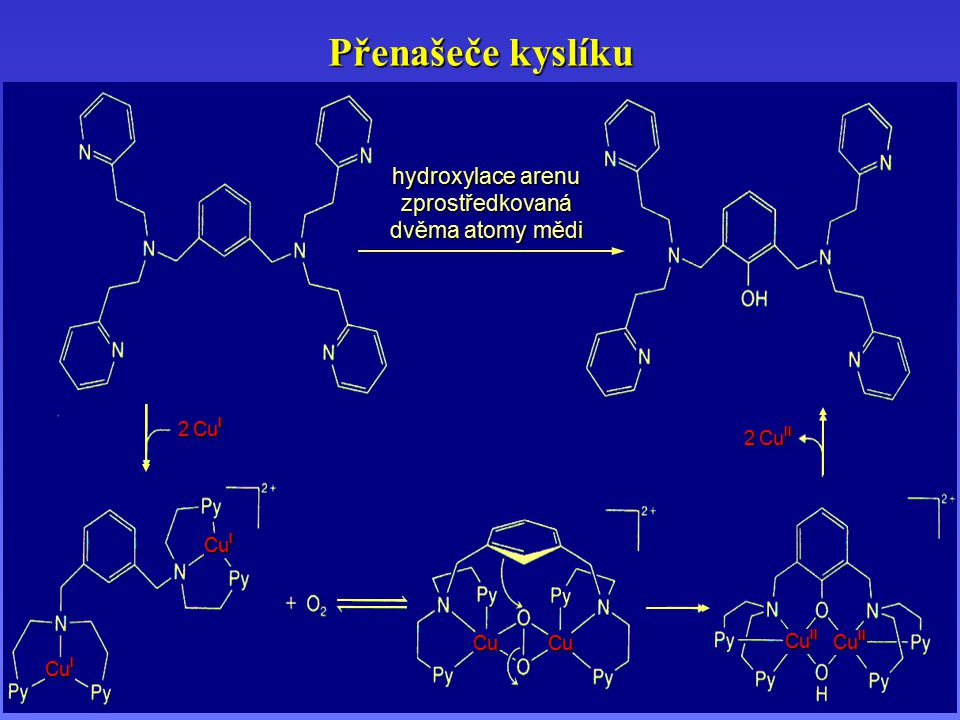 Přenašeče kyslíku hydroxylace arenu zprostředkovaná dvěma atomy mědi