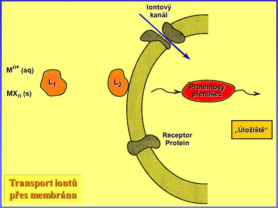 Transport iontů přes membránu