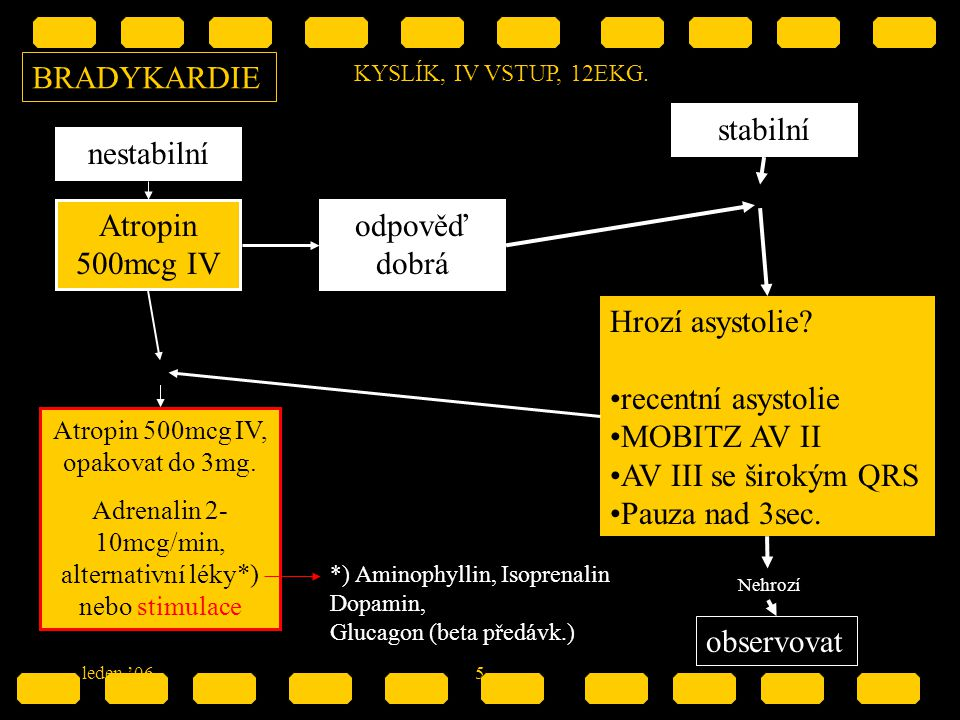 BRADYKARDIE stabilní nestabilní Atropin 500mcg IV odpověď dobrá