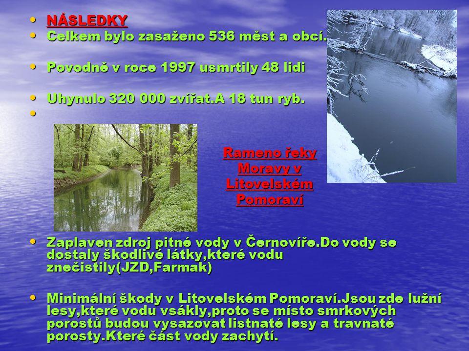 Rameno řeky Moravy v Litovelském Pomoraví