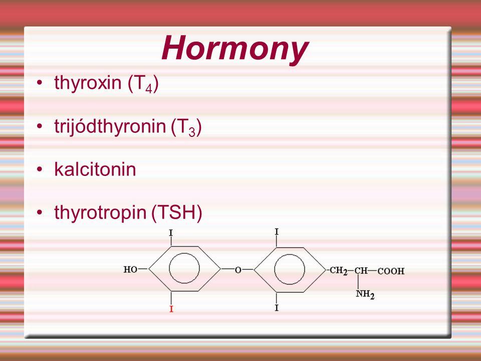 Hormony thyroxin (T4) trijódthyronin (T3) kalcitonin thyrotropin (TSH)