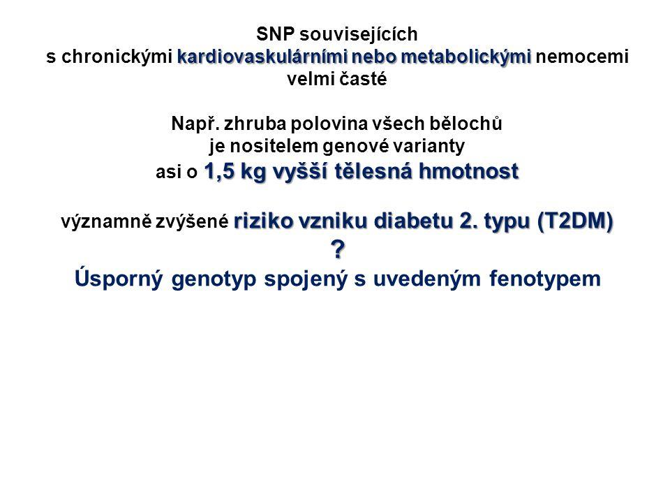 Úsporný genotyp spojený s uvedeným fenotypem SNP souvisejících