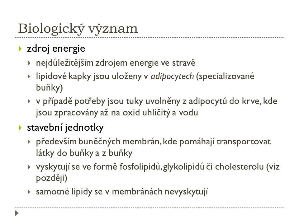 Biologický význam zdroj energie stavební jednotky