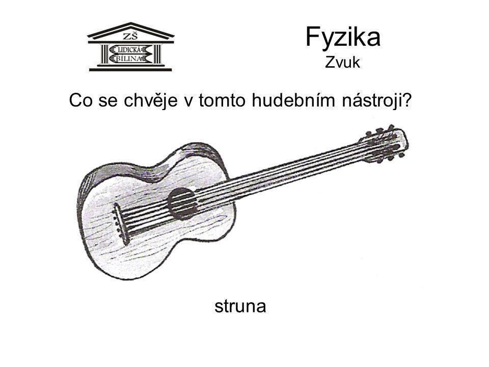 Co se chvěje v tomto hudebním nástroji