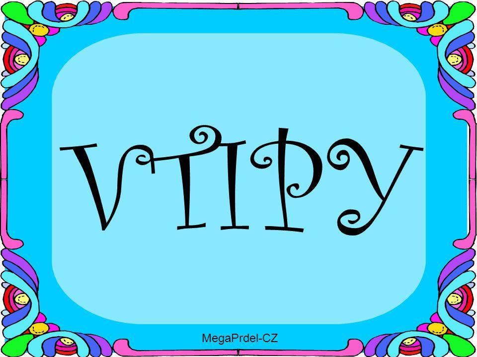 VTIPY MegaPrdel-CZ