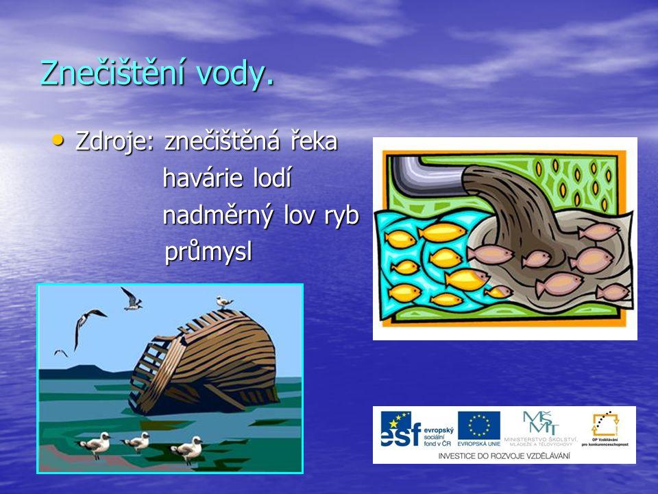 Znečištění vody. Zdroje: znečištěná řeka havárie lodí nadměrný lov ryb